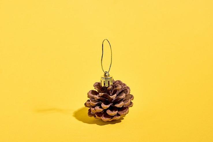 decoration noel pomme de pin