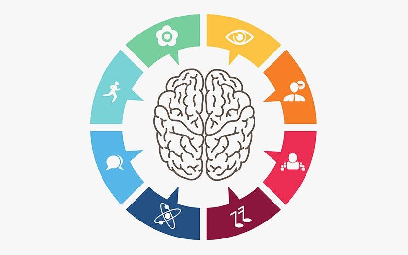 les 8 différentes intelligences