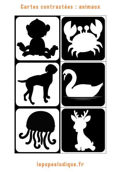 Images contrastées Montessori : animaux